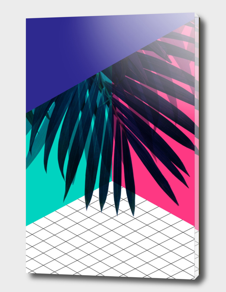 Eclectic Palms Geometry