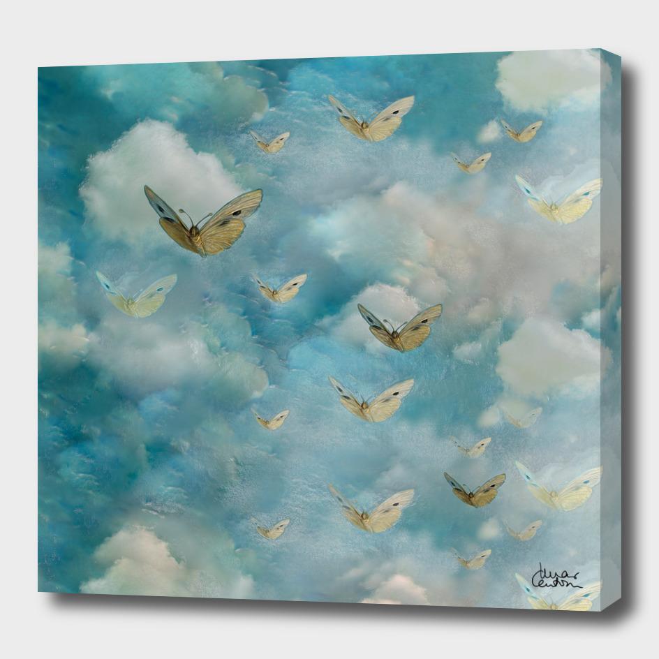"""Heaven & butterflies"""