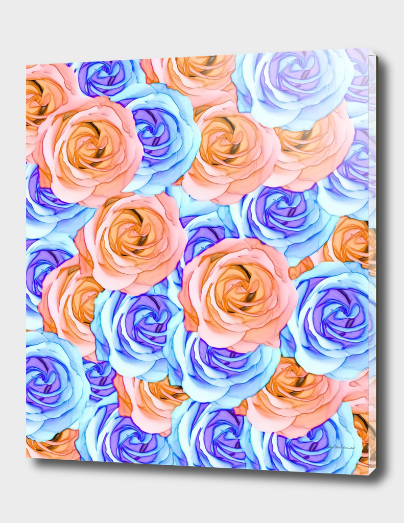 blooming rose pattern texture abstract in red and blue