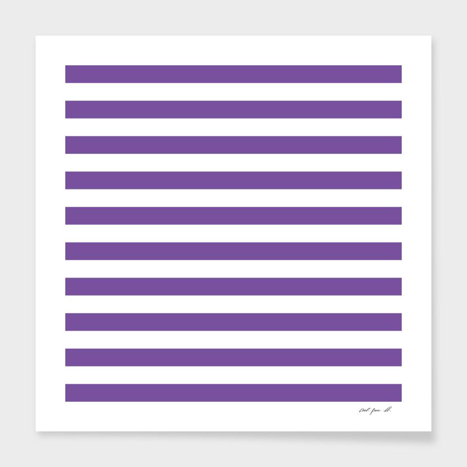 Horizontal Purple Stripes