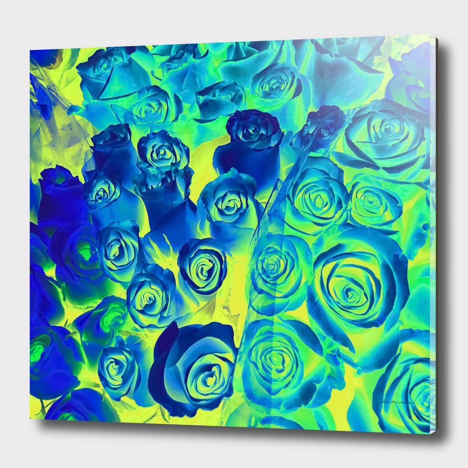 bouquet of blue and green rose pattern texture abstract