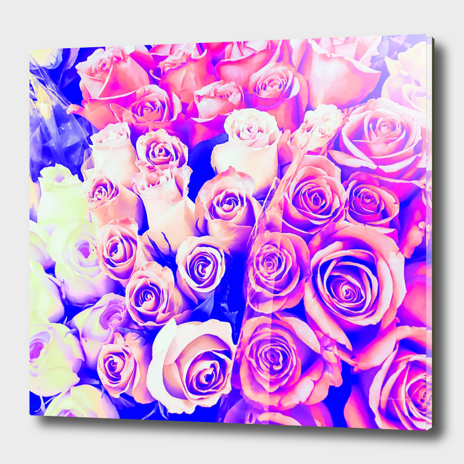 bouquet of pink and purple rose pattern texture abstract