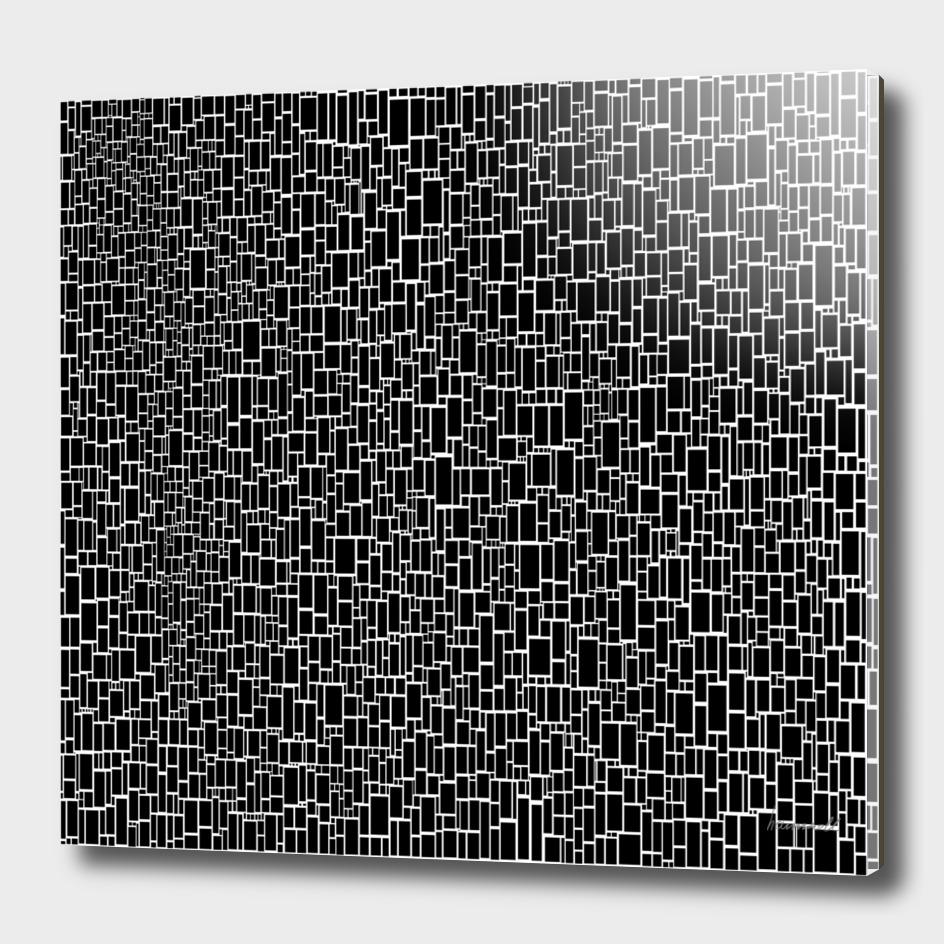 Black & White 9