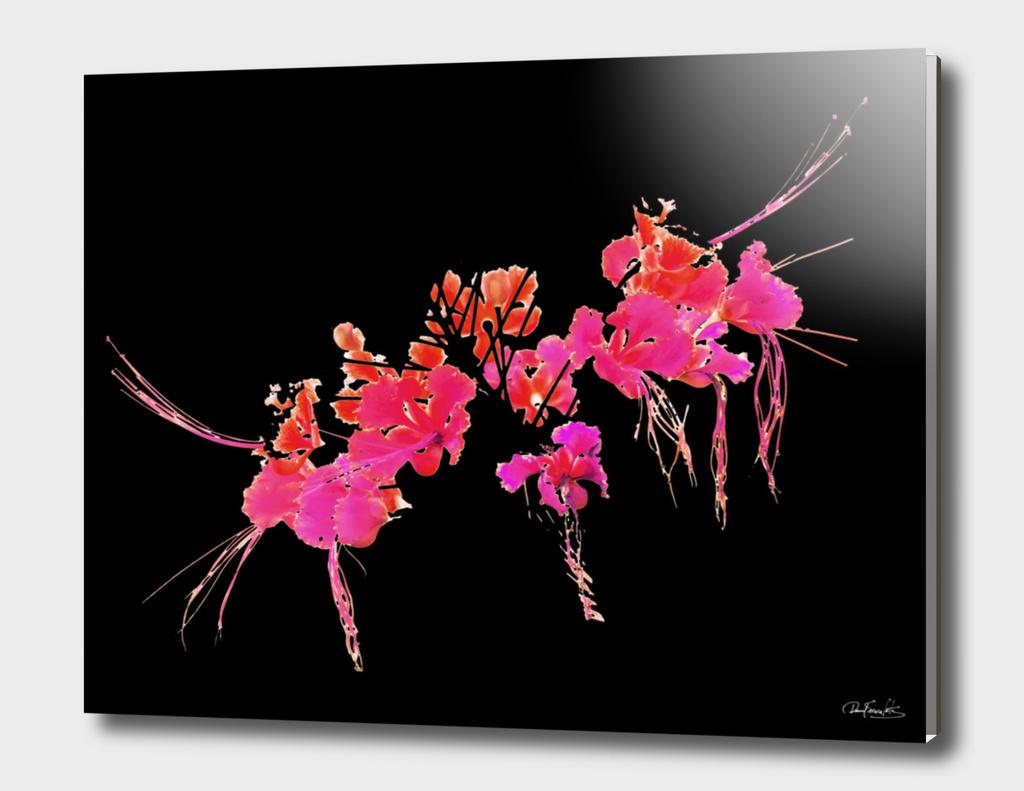 Minimalistic Floral
