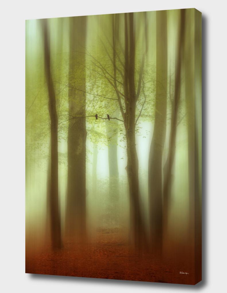 april haze abstract