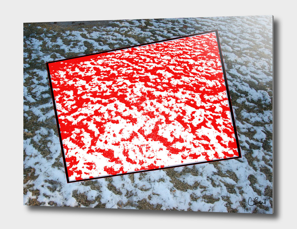 Red Snow on Snow