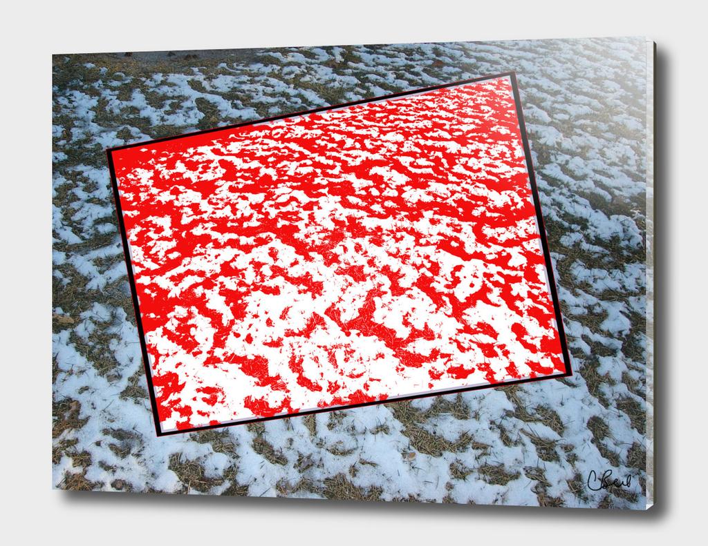 Red Snow on Snow