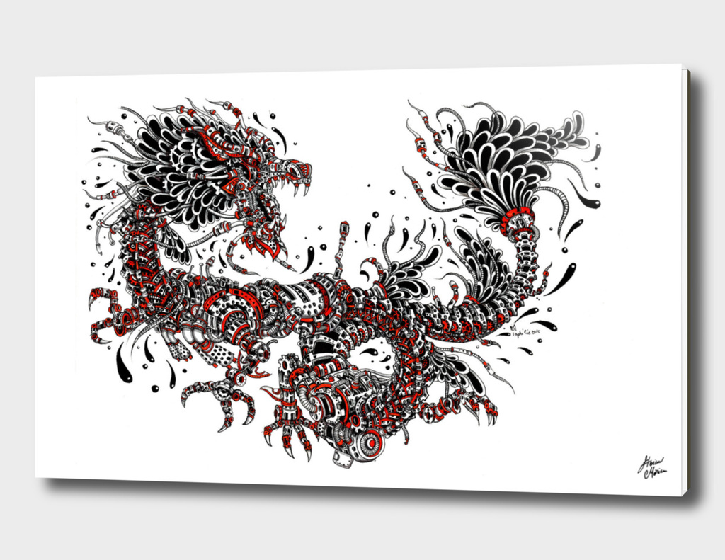 junk dragon