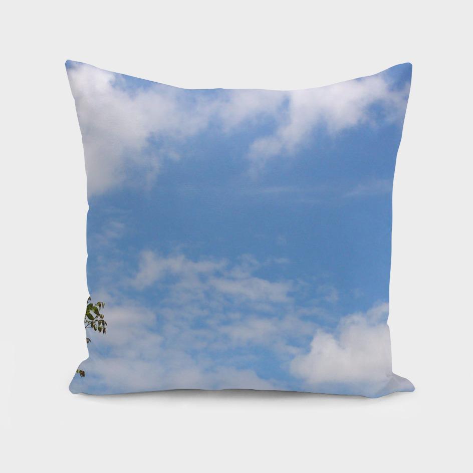 Clouds (12)