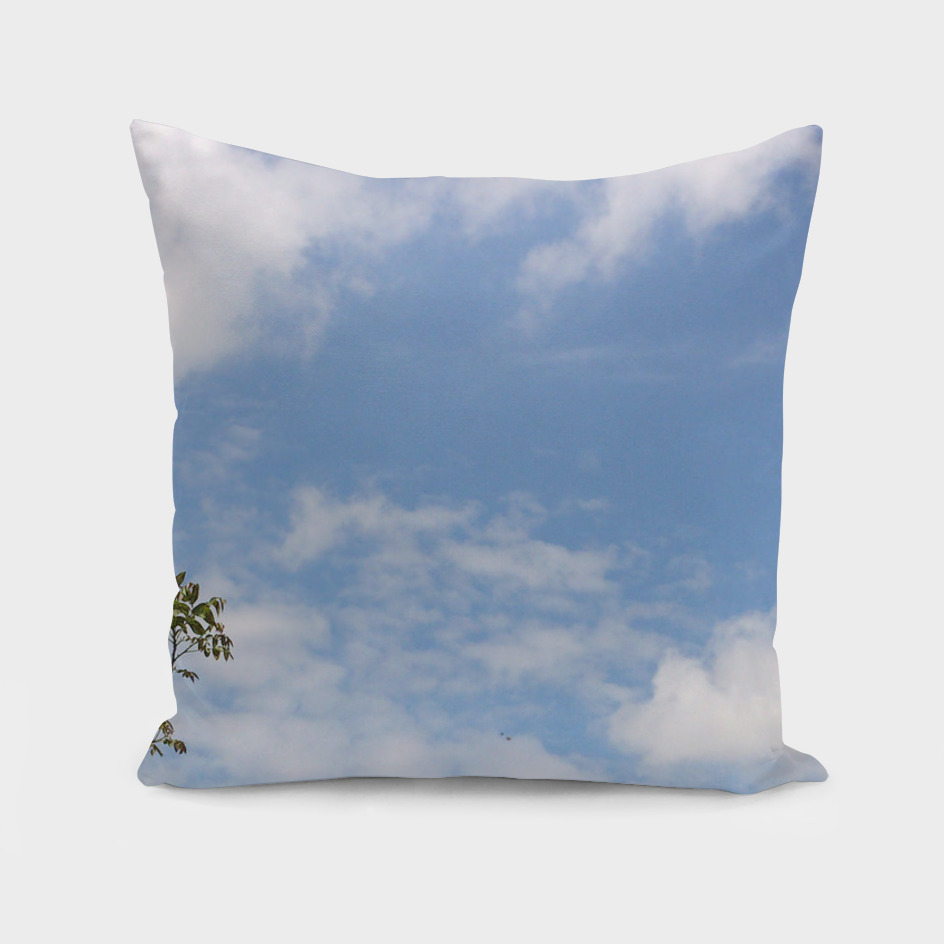 Clouds (14)