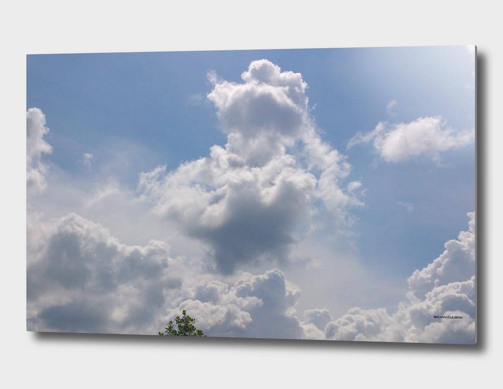Clouds (15)