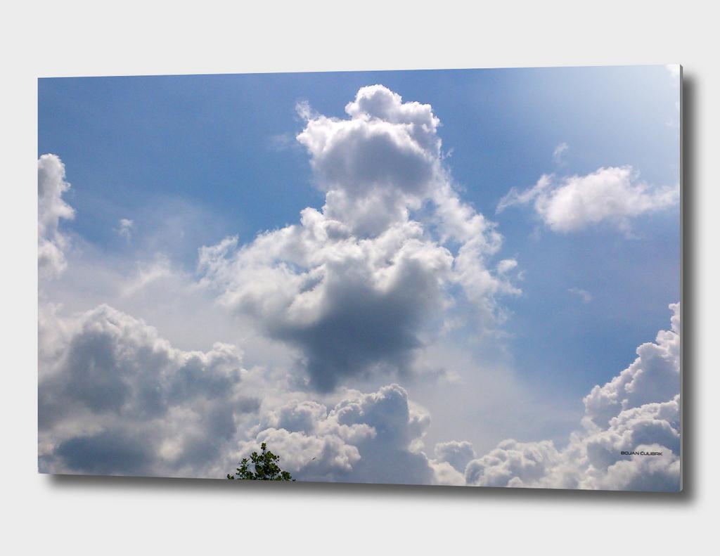 Clouds (16)