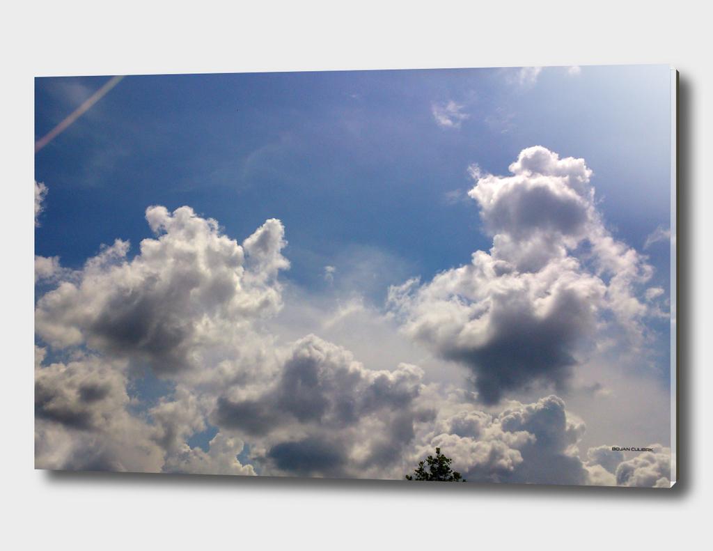 Clouds (21)