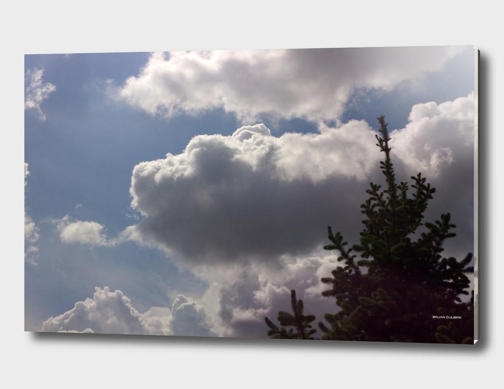 Clouds (24)