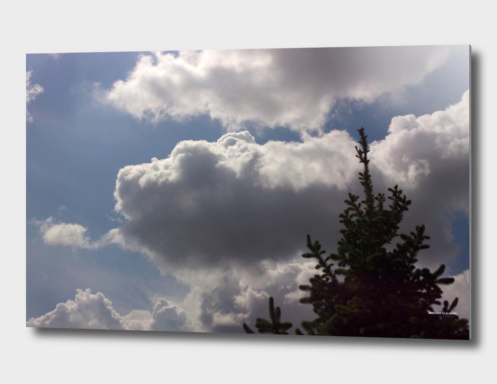Clouds (25)