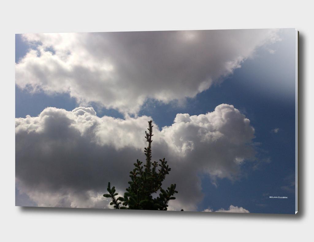 Clouds (26)