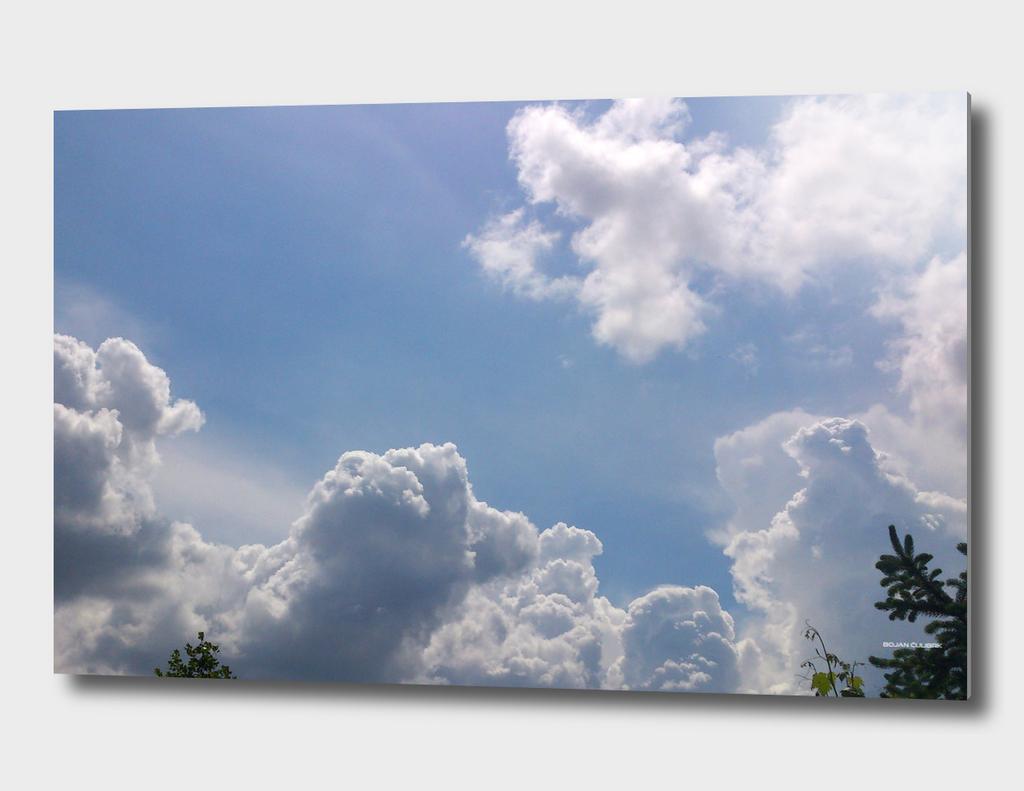 Clouds (31)