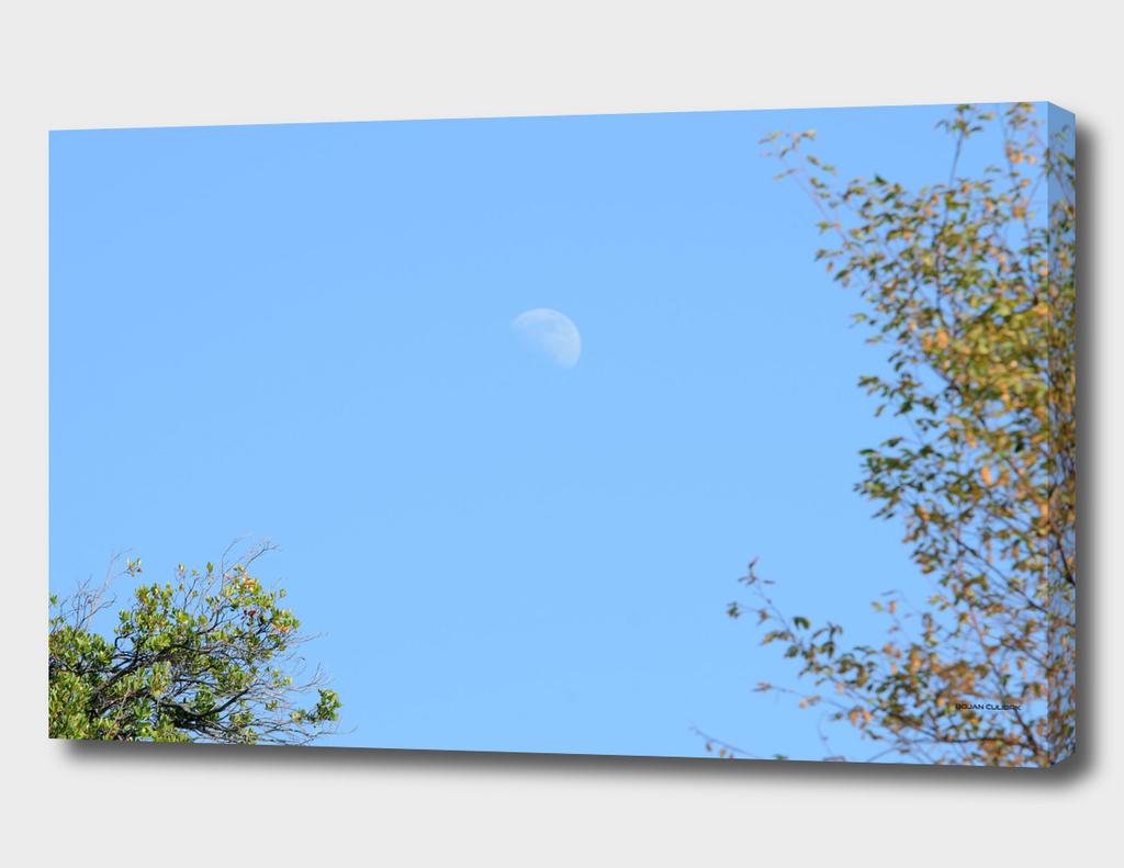 Moon (6)
