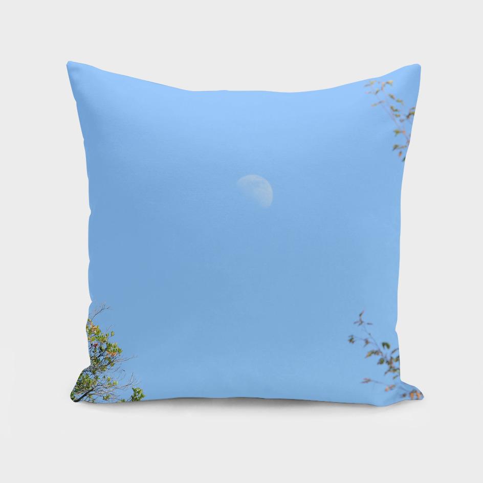 Moon (7)