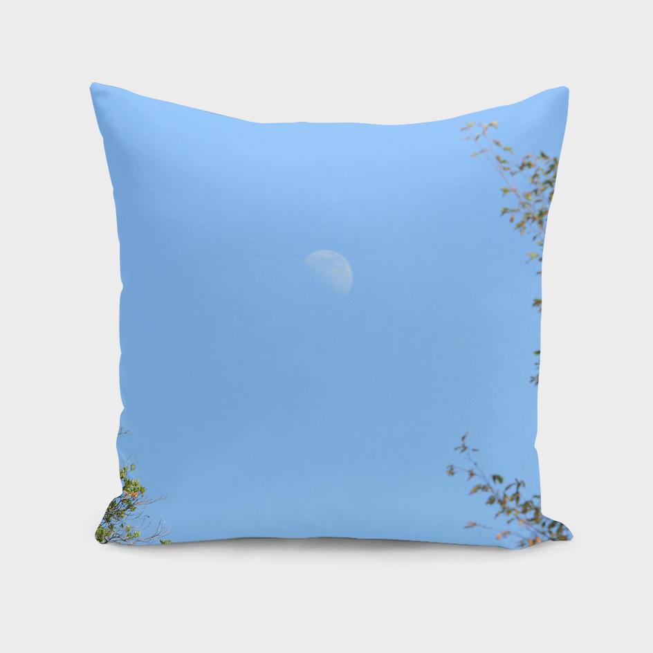 Moon (9)