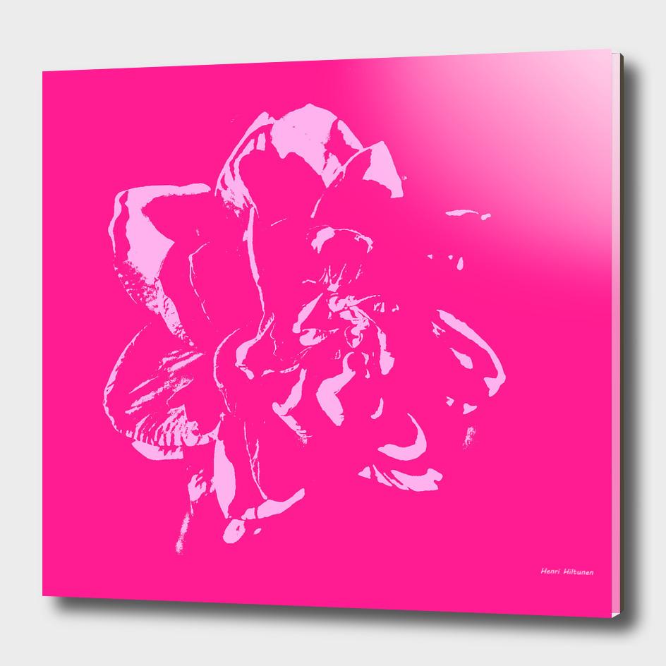 Flower  25