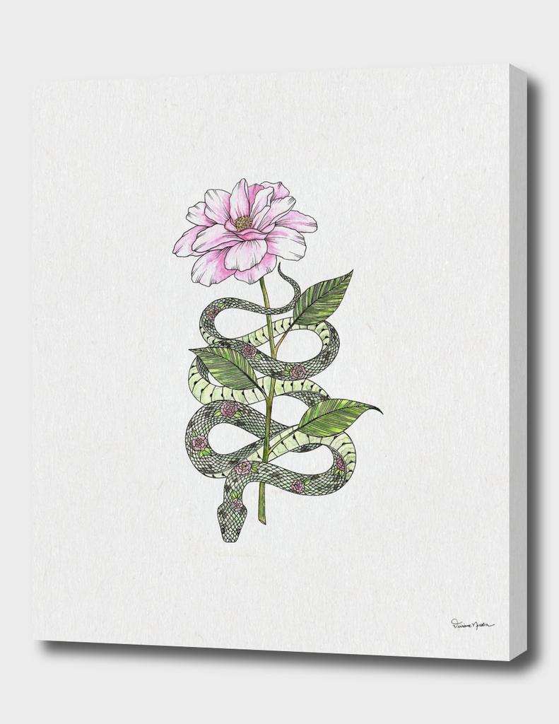 Snake & Flower