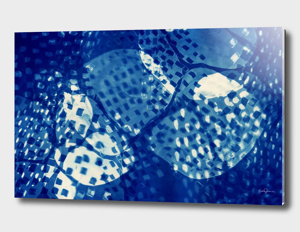 Cyanotype Landscape I