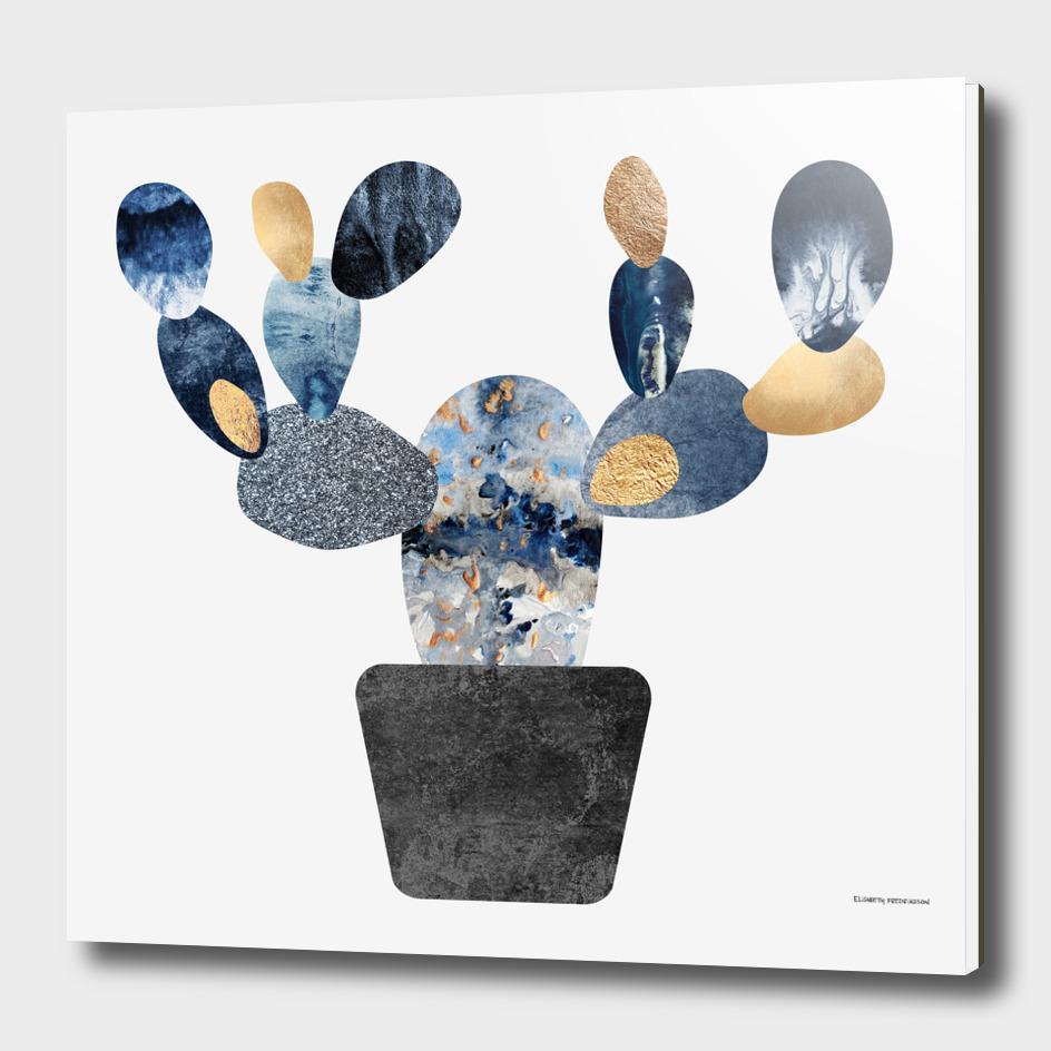 Blue & Gold Cactus