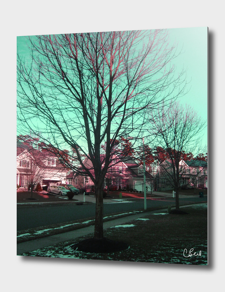 Red Green Tree