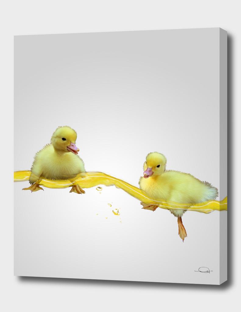 Duckies Yellow Swim