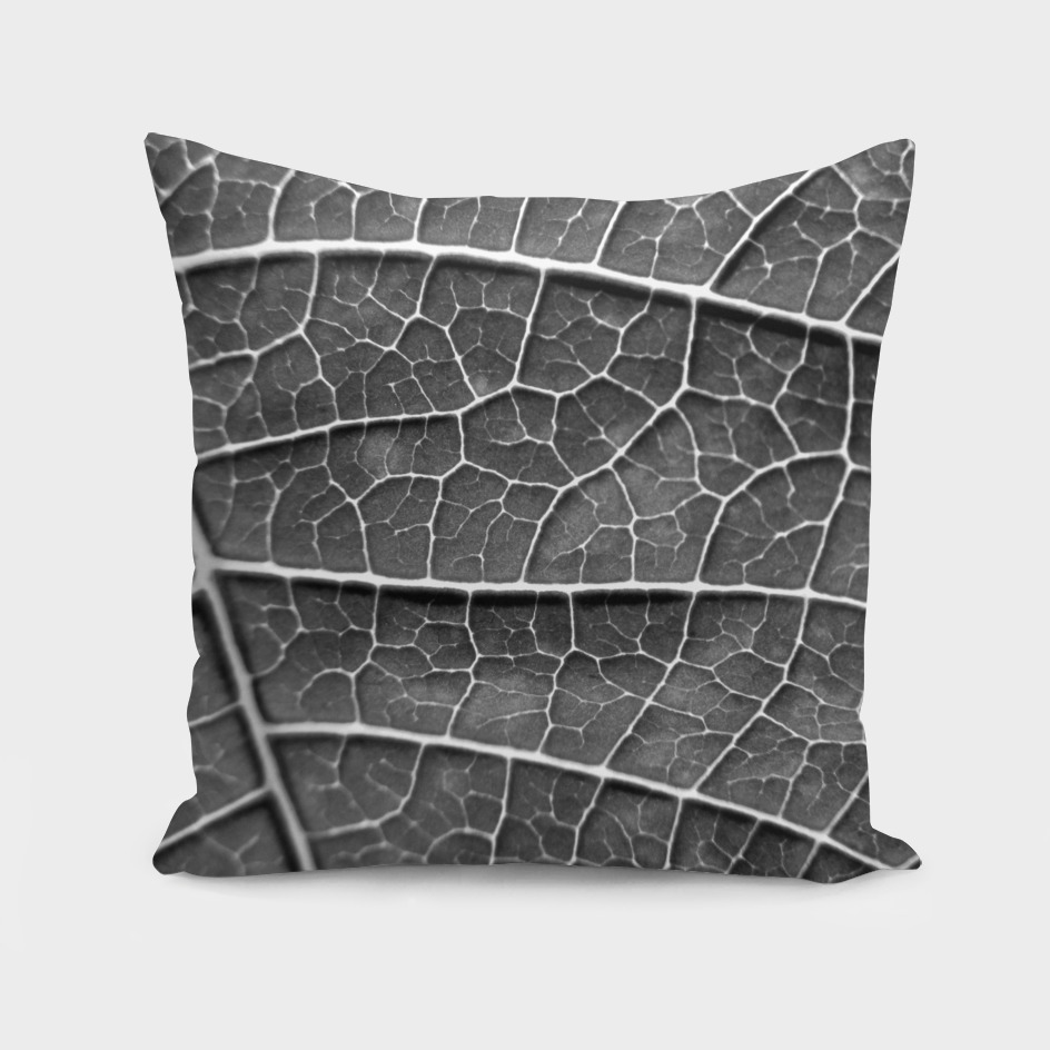 LEAF STRUCTURE BLACK AND WHITE