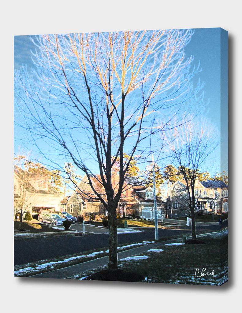 White Tipped Tree