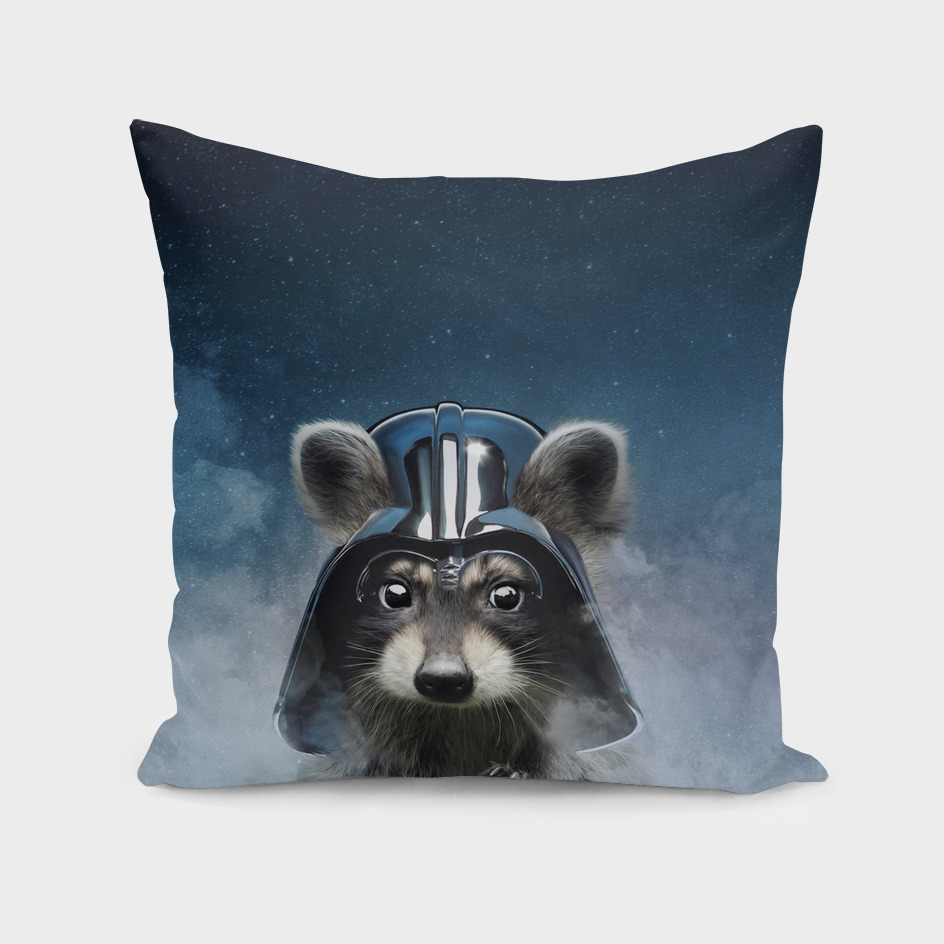 racoon vader