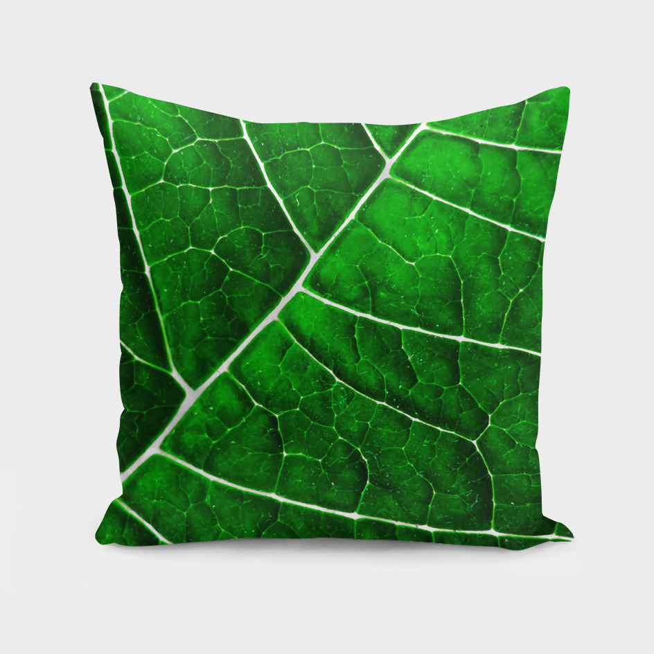 LEAF STRUCTURE GREENERY no5
