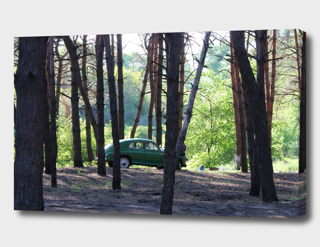 The car in the woods