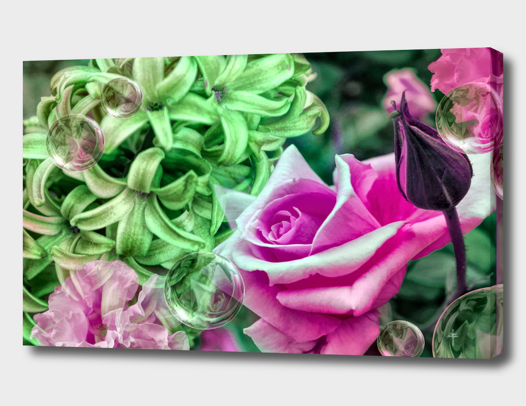 Roses And Hyacinths -  PINK GREEN