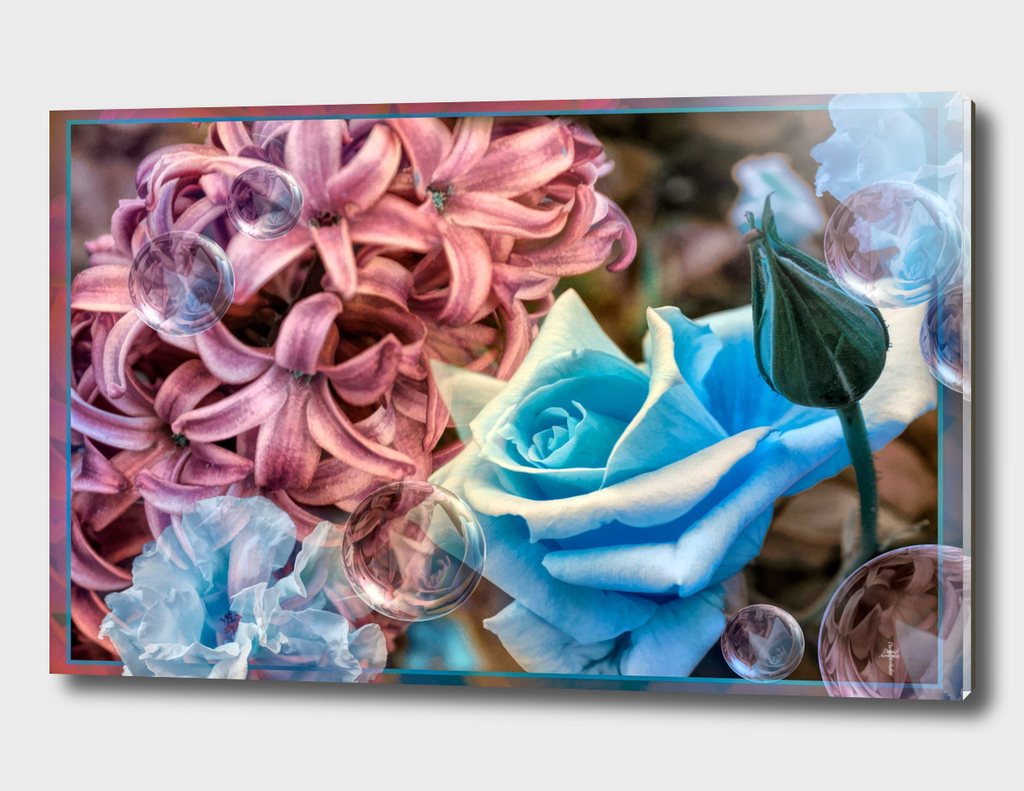 Roses And Hyacinths - BLUE PINK