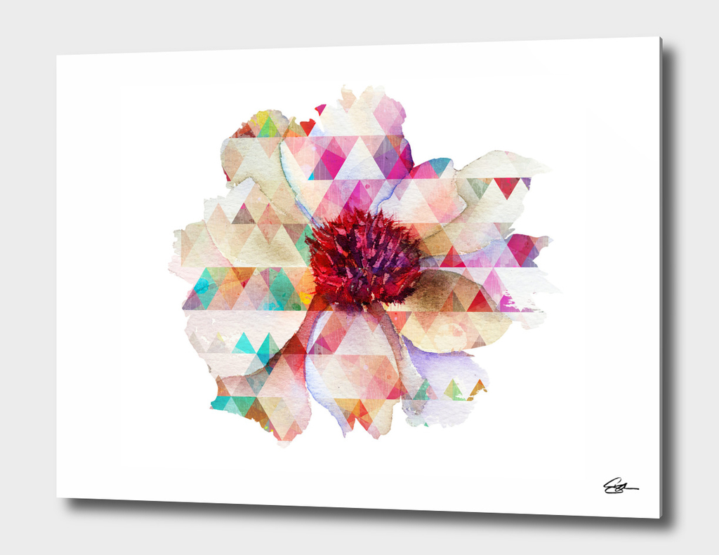 Geo Flower 2