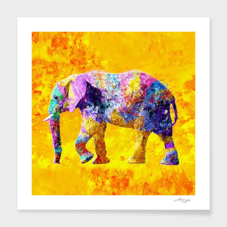 Elephant Colorful Design