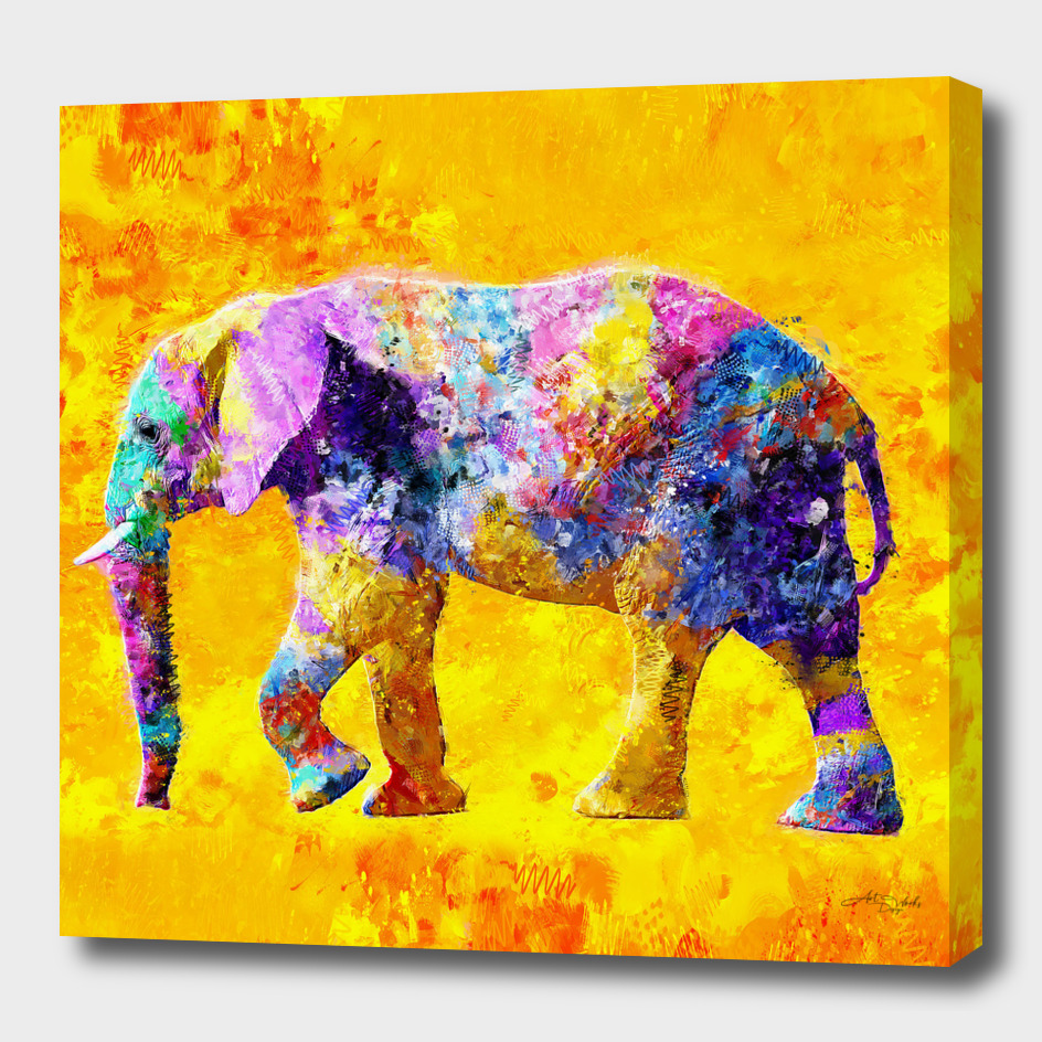 Elephant Colorful Design