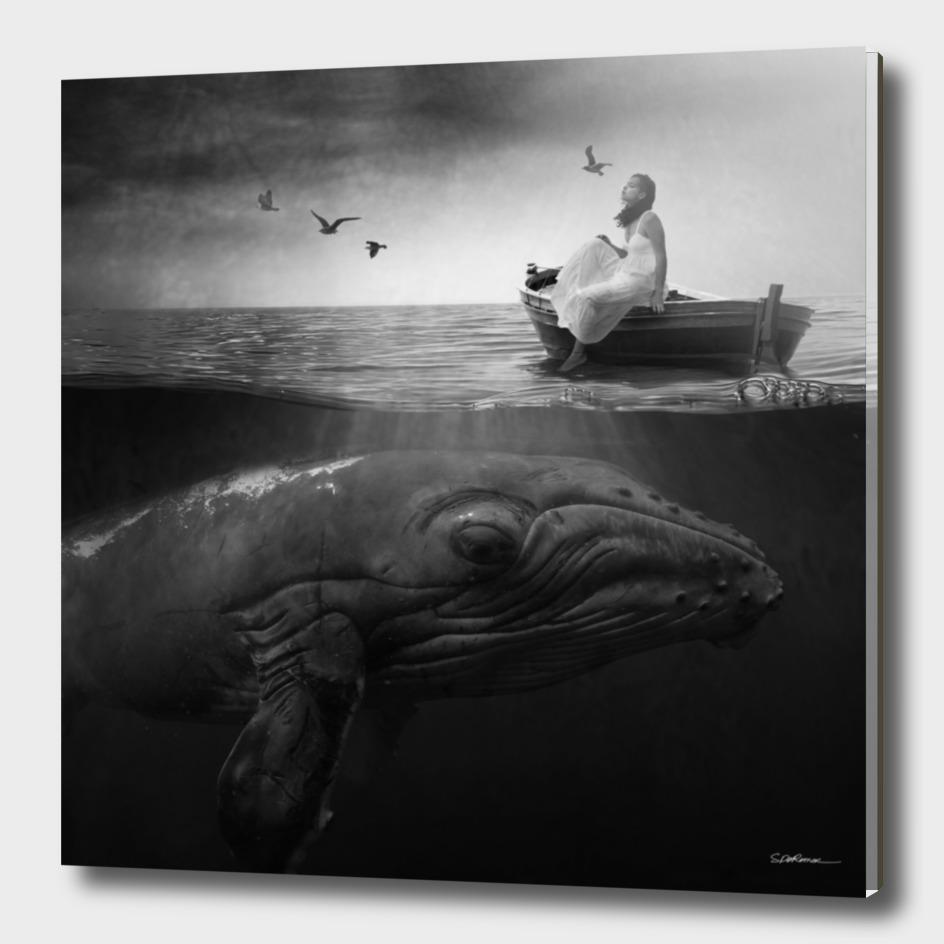 Girl & Whale