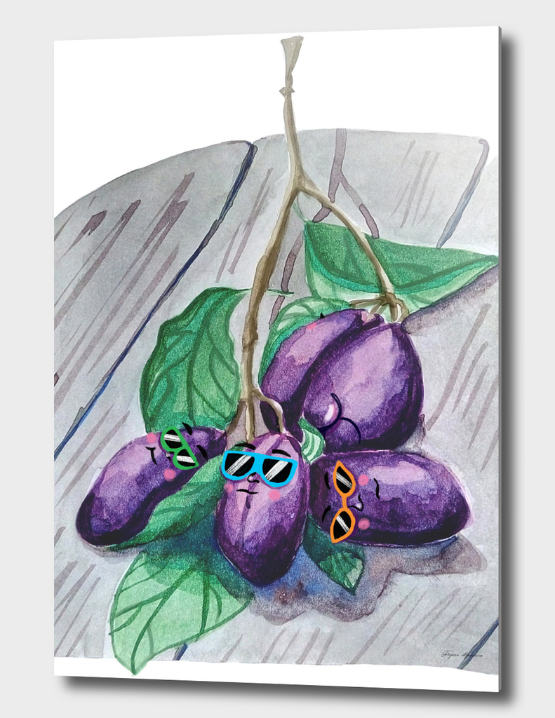 Swag plums illustration