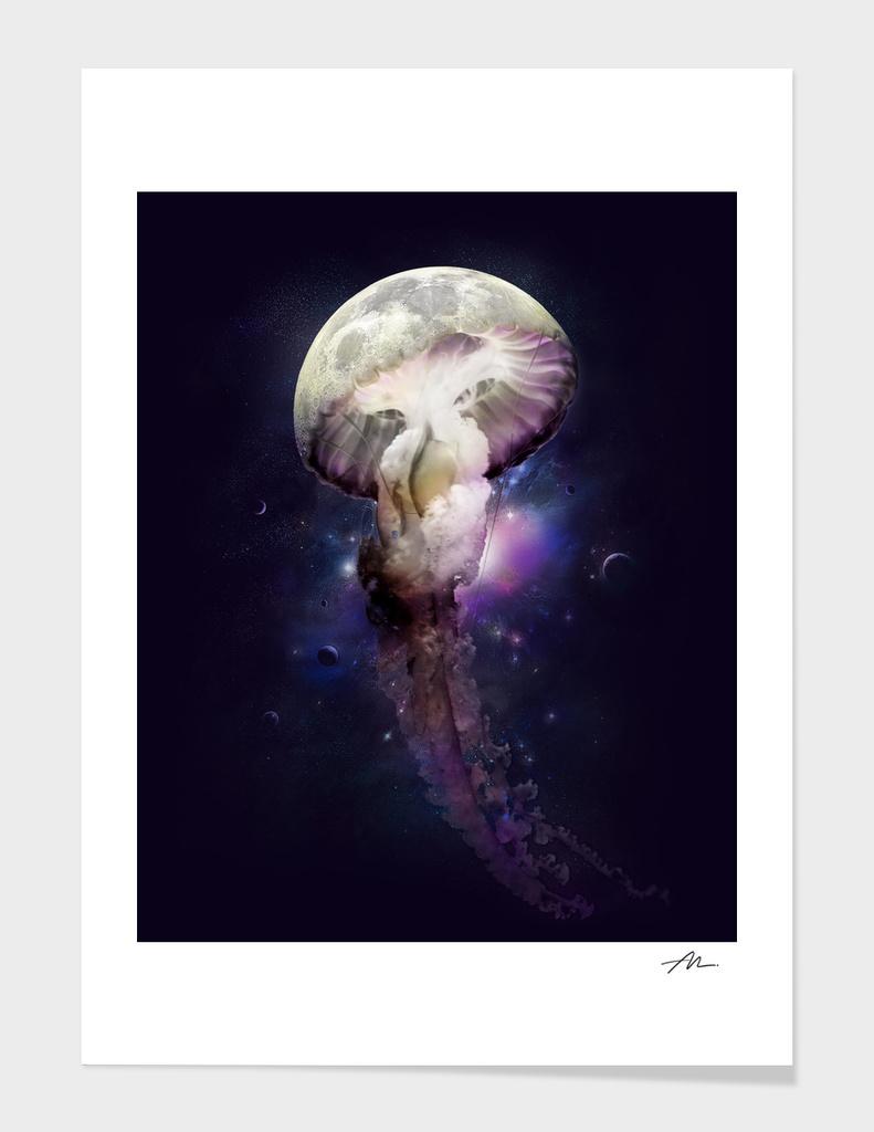 Cosmic Anomaly