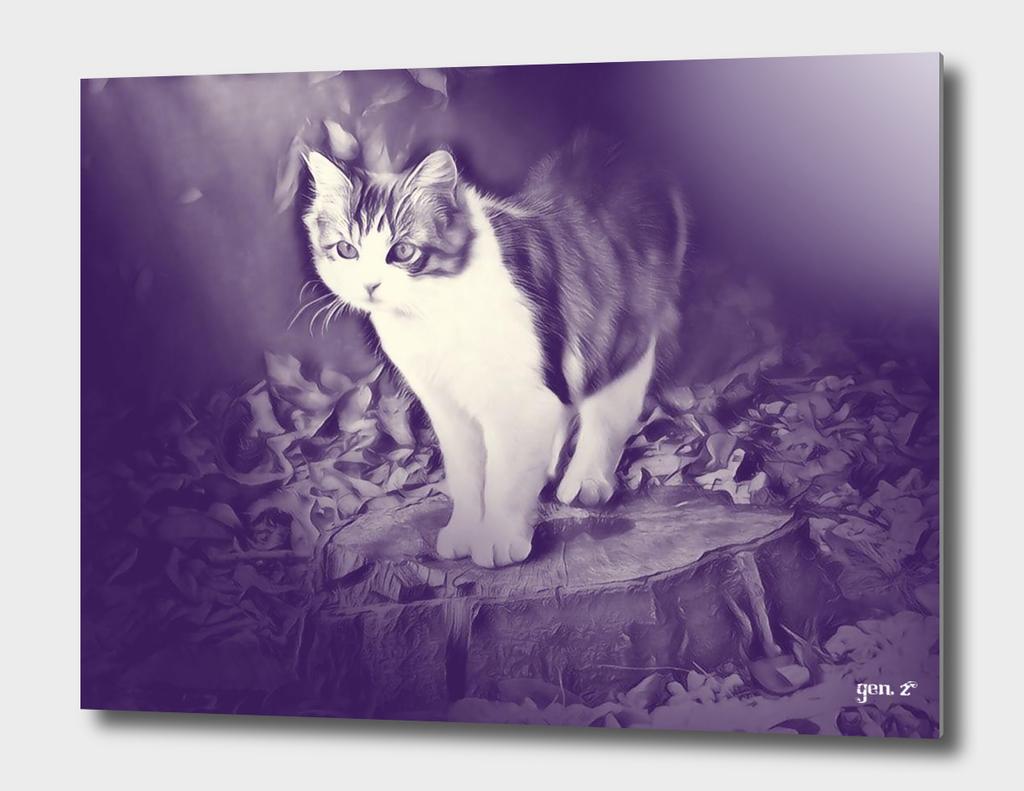 Podium (cat) by GEN Z