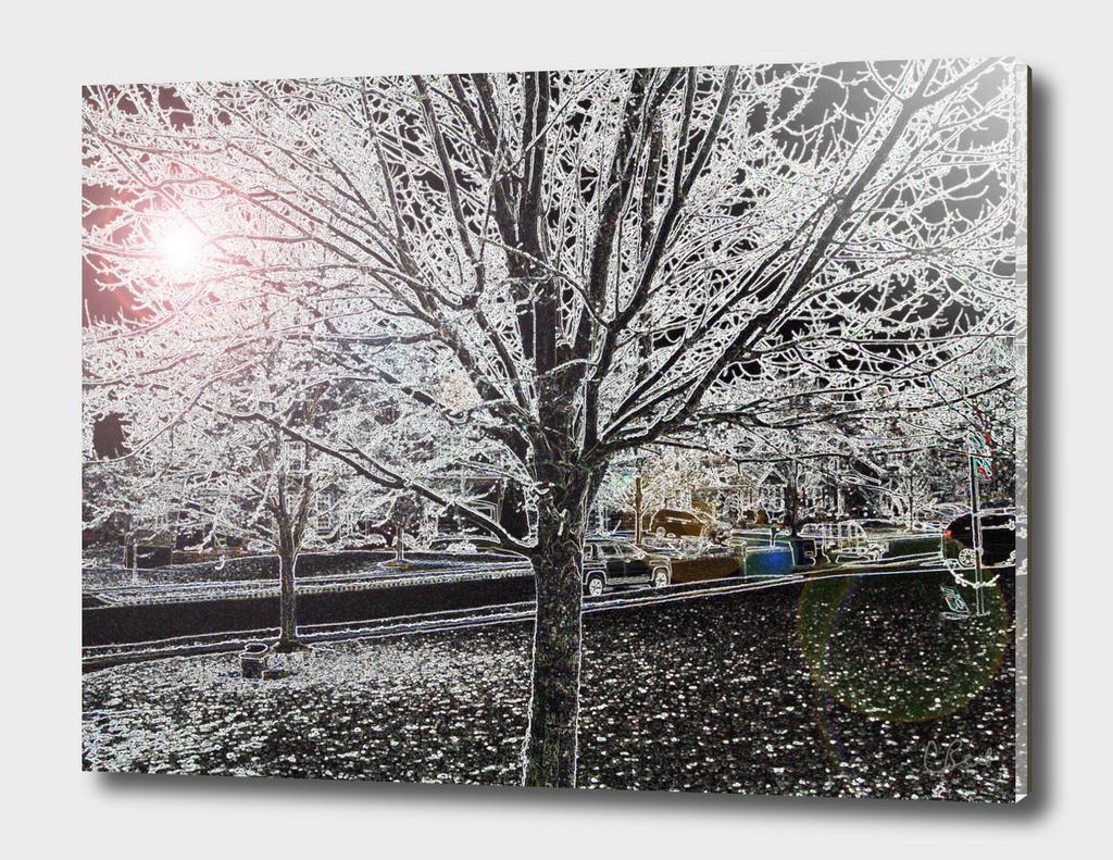 Tree of Snow