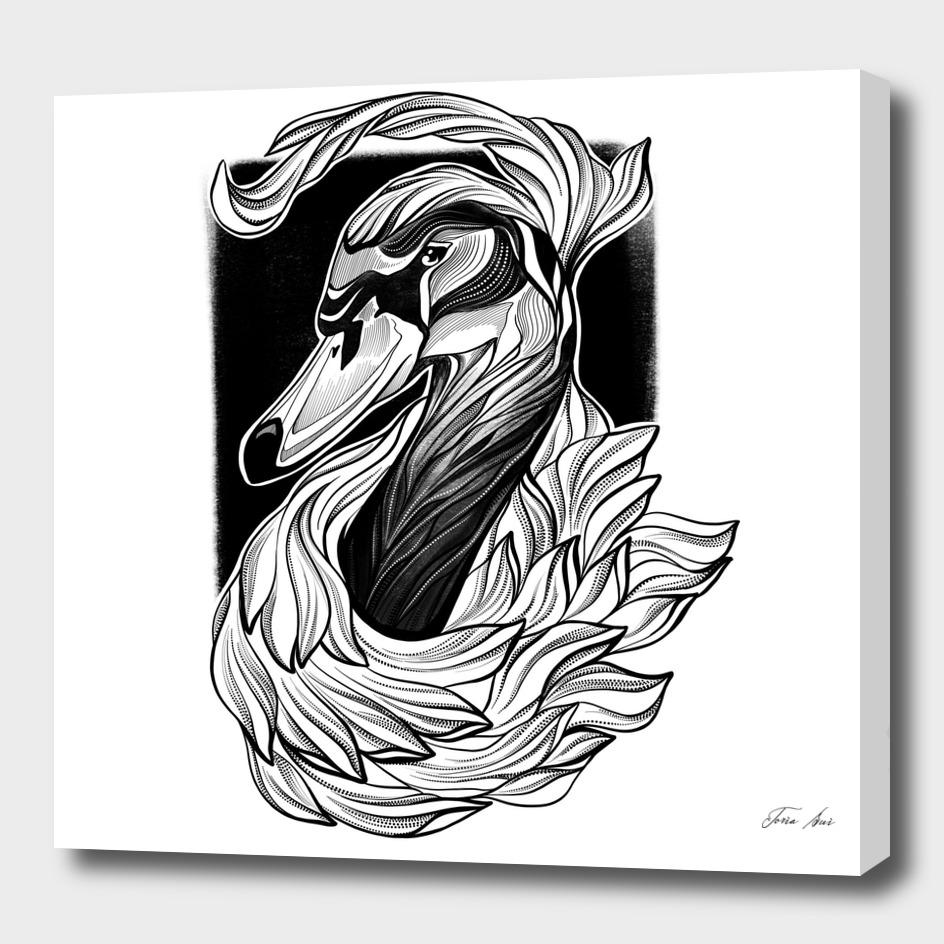 """Black Swan"" inked black line graphic illustration"