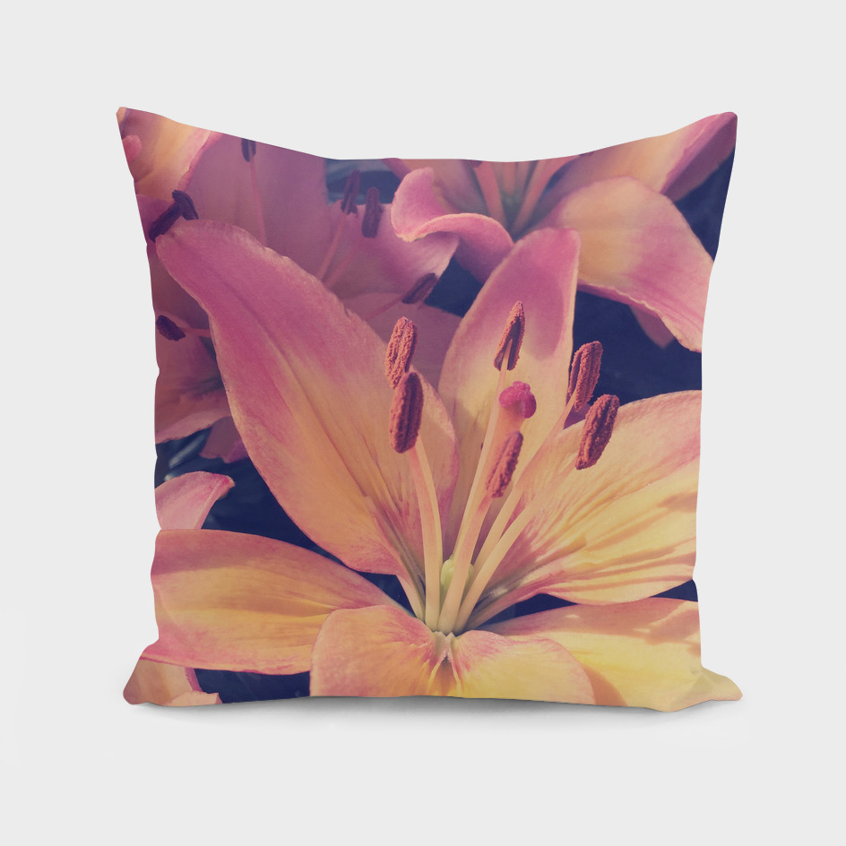 large blooming lilies in retro colours