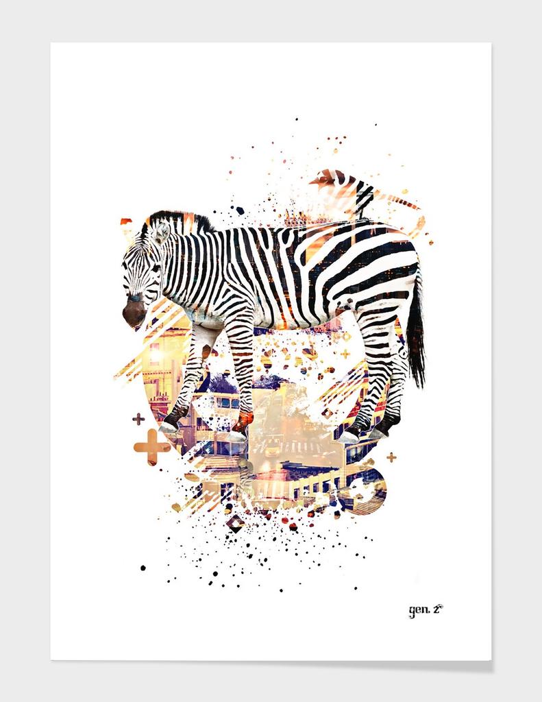 Zebra Cross by GEN Z