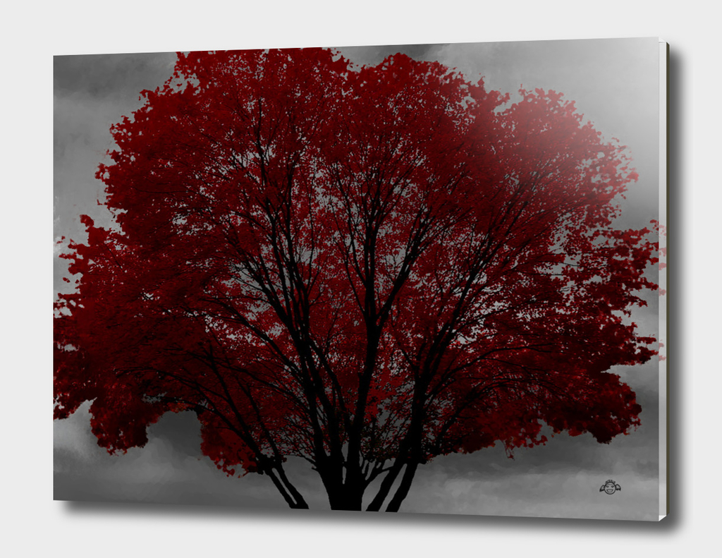 Red Tree, Grey Sky