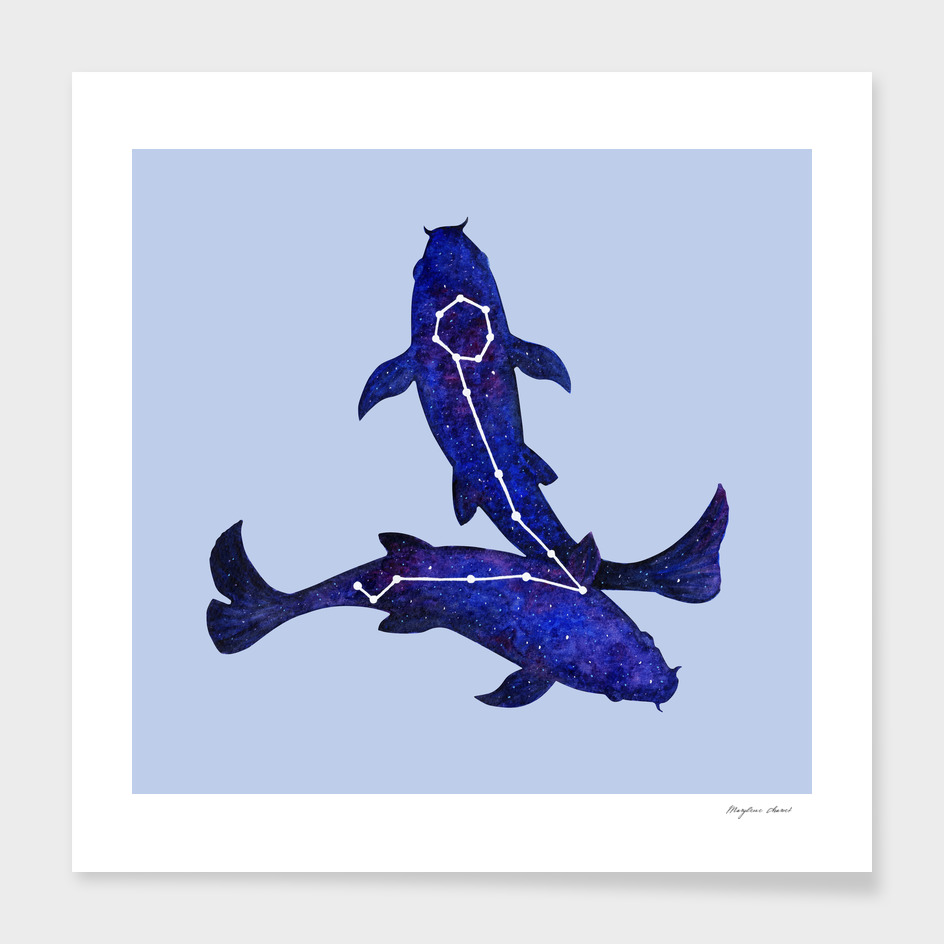 Astrological sign pisces constellation